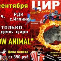 """ТОЛЬКО 1 день цирк «SHOW ANIMAL"""""""